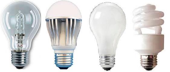 diferentes tipos de bombillas